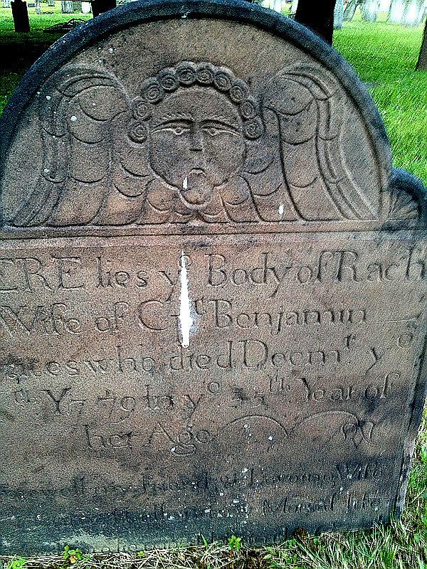 Scotch-graves