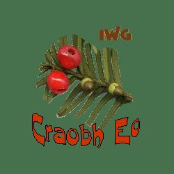 craobh eo logo transparent