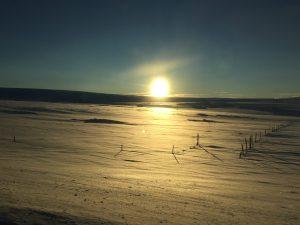 Sur la route de Thingvellir - Islande