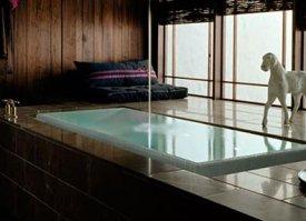 Infinity Edge Tub From Kohler Bath Designed To Overflow Boing Boing