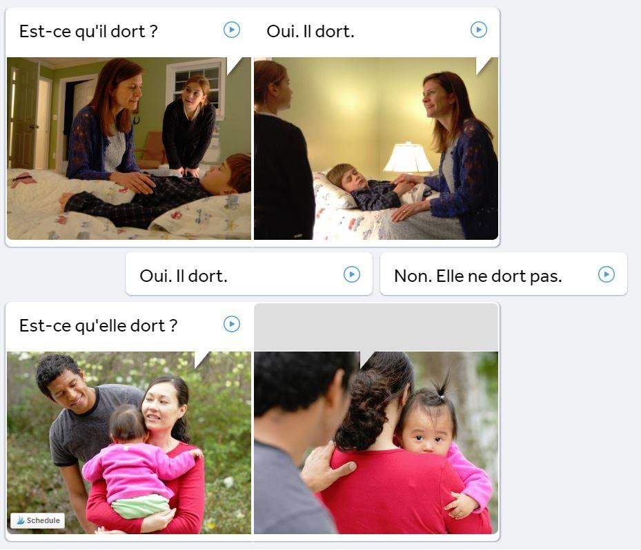 Rosetta Stone review: using language skills