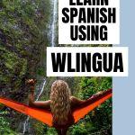 wlingua spanish