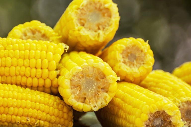 How to make corn on the cob perfectly every time