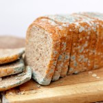 Is it safe to still eat the safe-looking parts of moldy bread?