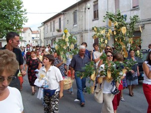 Festival attendees carry trees adorned with pizzelle for a holiday remembering Beato Roberto, a 12th-century monk.
