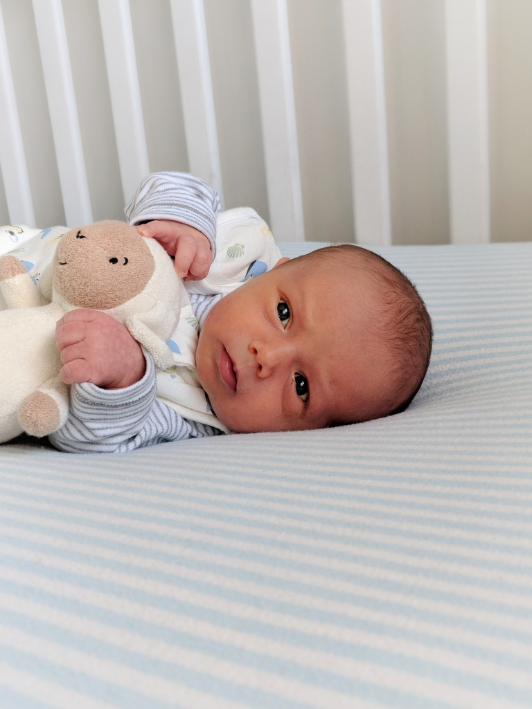 How To Choose The Best Non Toxic Crib Mattress Craving Avocados