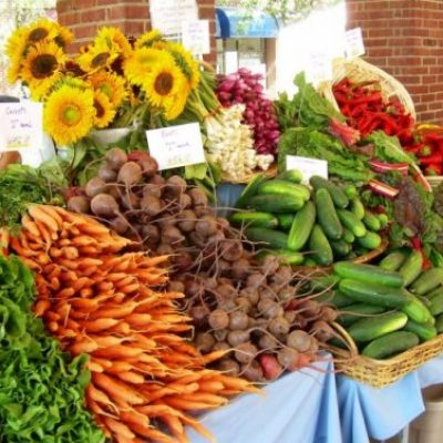 Harvest The Benefits of Summer Produce