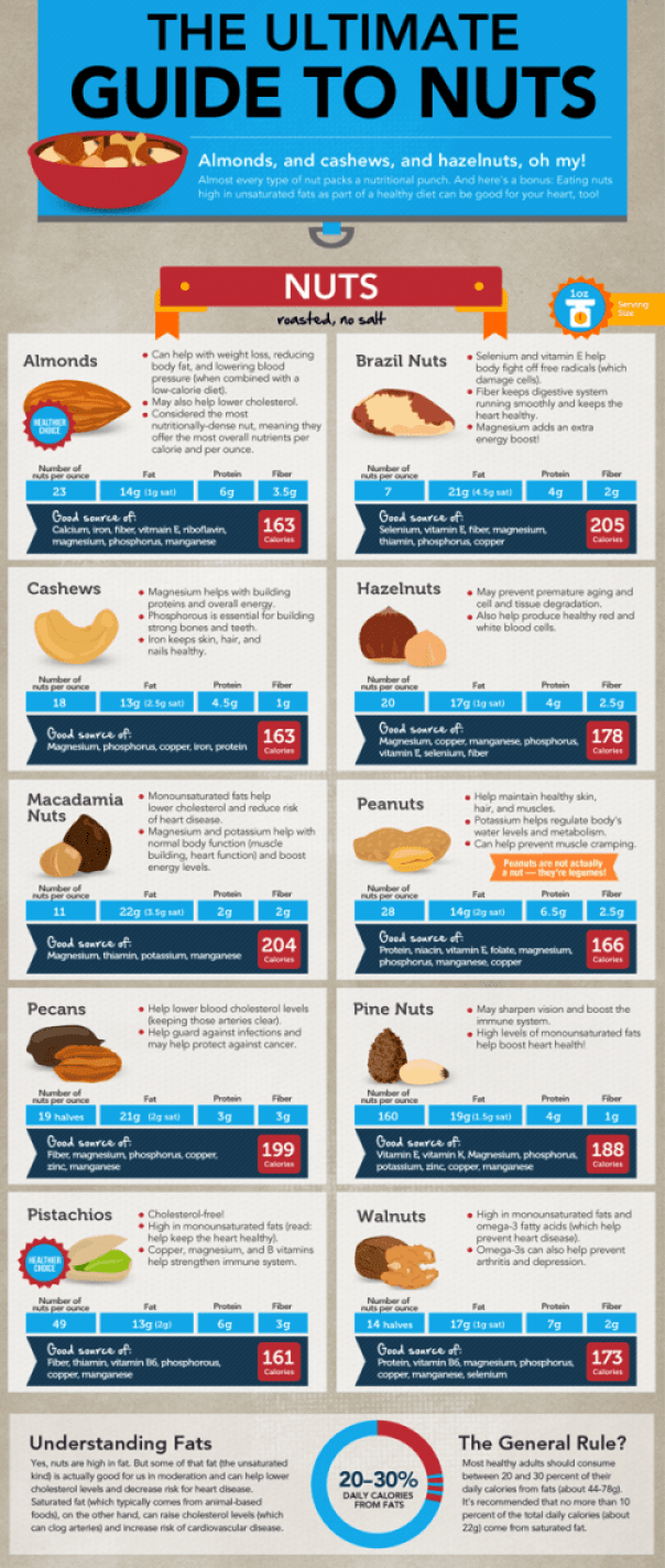 infographic-nuts