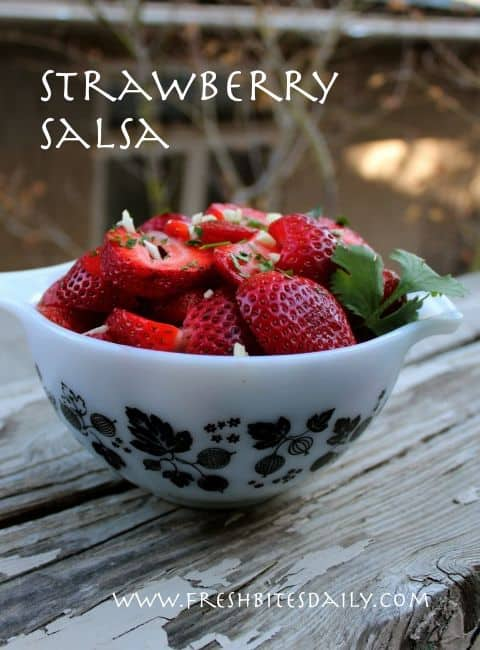 Strawberry Salsa|Fresh Bites Daily