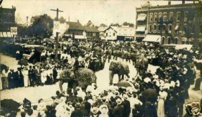 Elephants on Parade in Washington Square in Bucyrus, Ohio