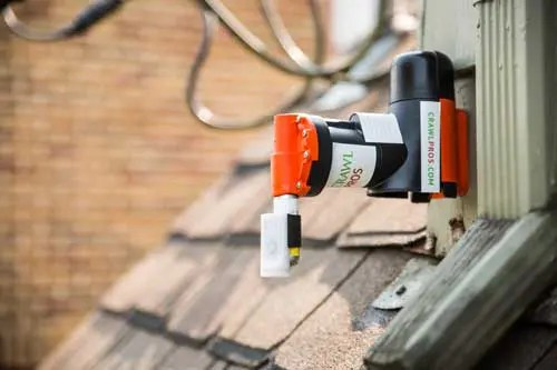 Rodent Damage Prevention Solutions Crawl Pros