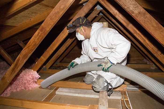 removing attic insualtion