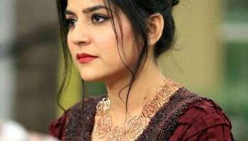 Mahnoor Baloch Biography - Super Famous Pakistani Actress