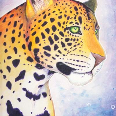 A2 Preview Leopard