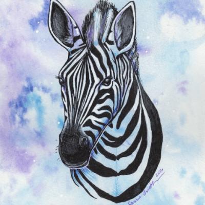 Zebra Bust in Blue