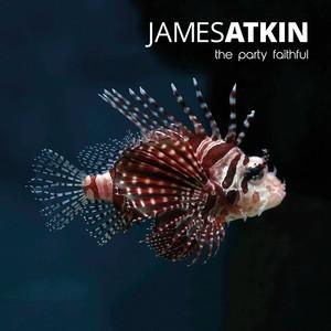 James_Atkin_the_party_faithful_copy_atkin_rv