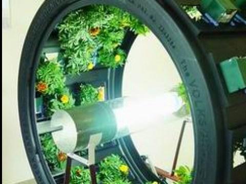 mini indoor garten rotating circular indoor garden -craziest gadgets