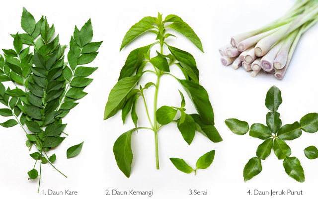 Balinese (Asian) Savory Herbs Guide