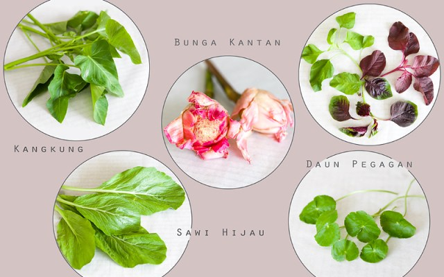 Balinese (Asian) herbs Guide Part 2