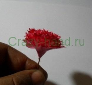 gvozdiki-tutorial1