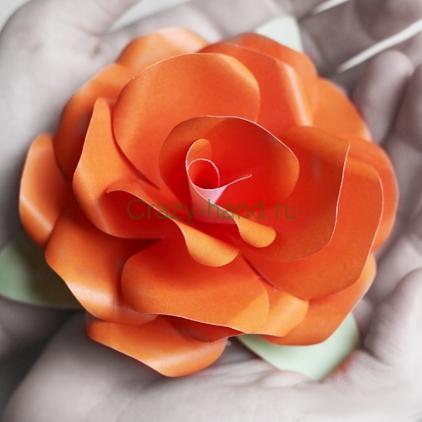 paper-rose3
