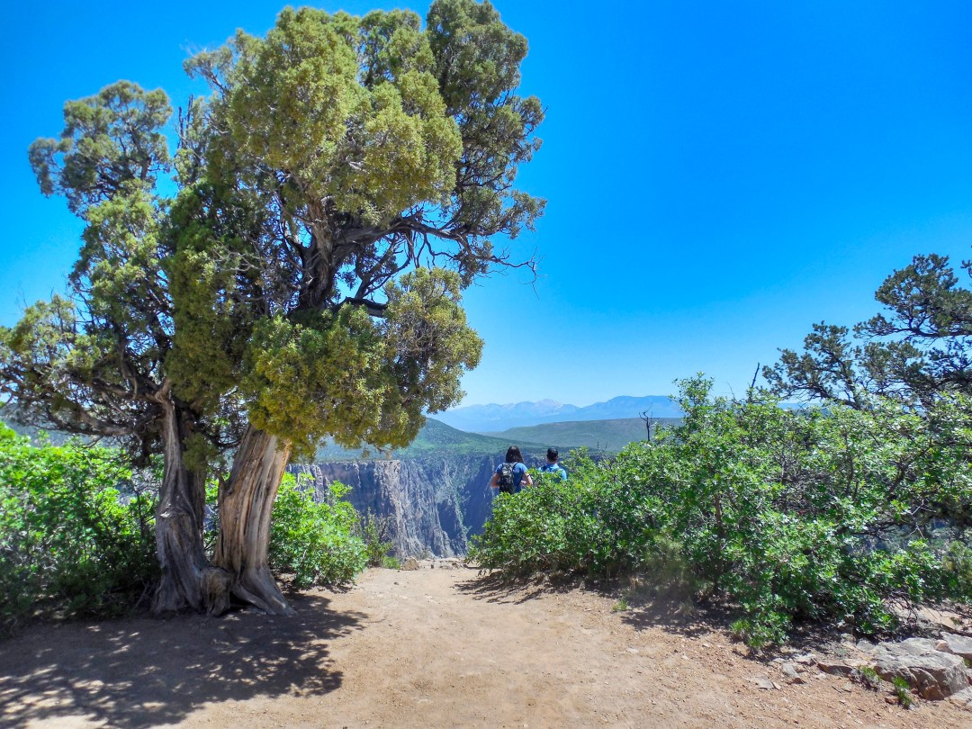 Warner Point Trail, Colorado hikes, best hike in Black Canyon of the Gunnison, Black Canyon National Park,