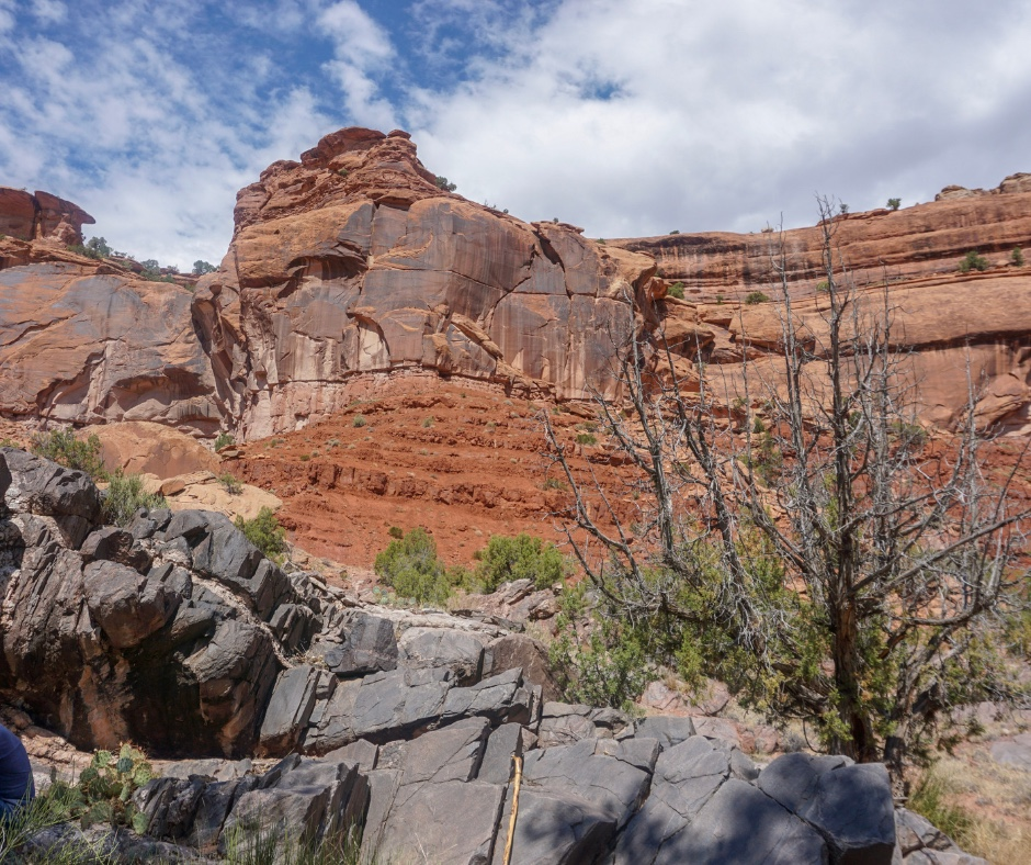 Dominguez Escalante Wilderness,