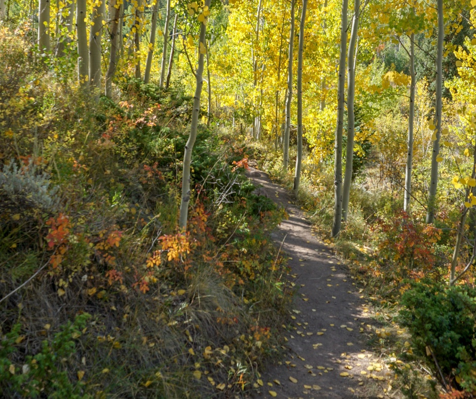 hiking in Colorado, Colorado Hikes, Easy hikes near Summit County, Frisco hiking, Silverthorne Hiking trails, Colorado Lake hikes, Colorado waterfall hikes, where to hike near Dillon CO, kid friendly hikes in Colorado, where to take visitors in CO,