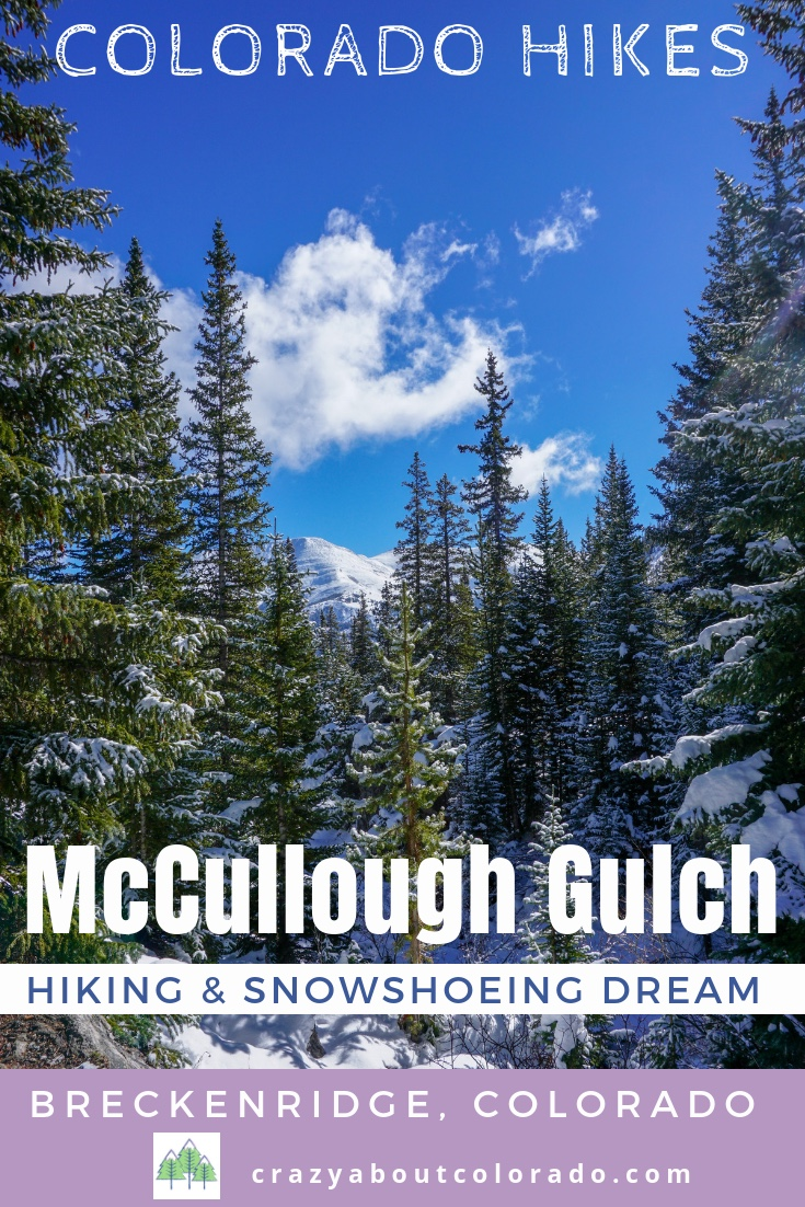 Colorado's Best Hiking trails, Hiking trails in Colorado, McCullough Gulch Trail, Hiking near Breck, Summit County, Hoosier Pass, Quandary Peak,