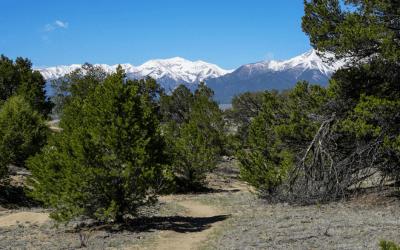 A Trail of Stunning Views, Django Trail