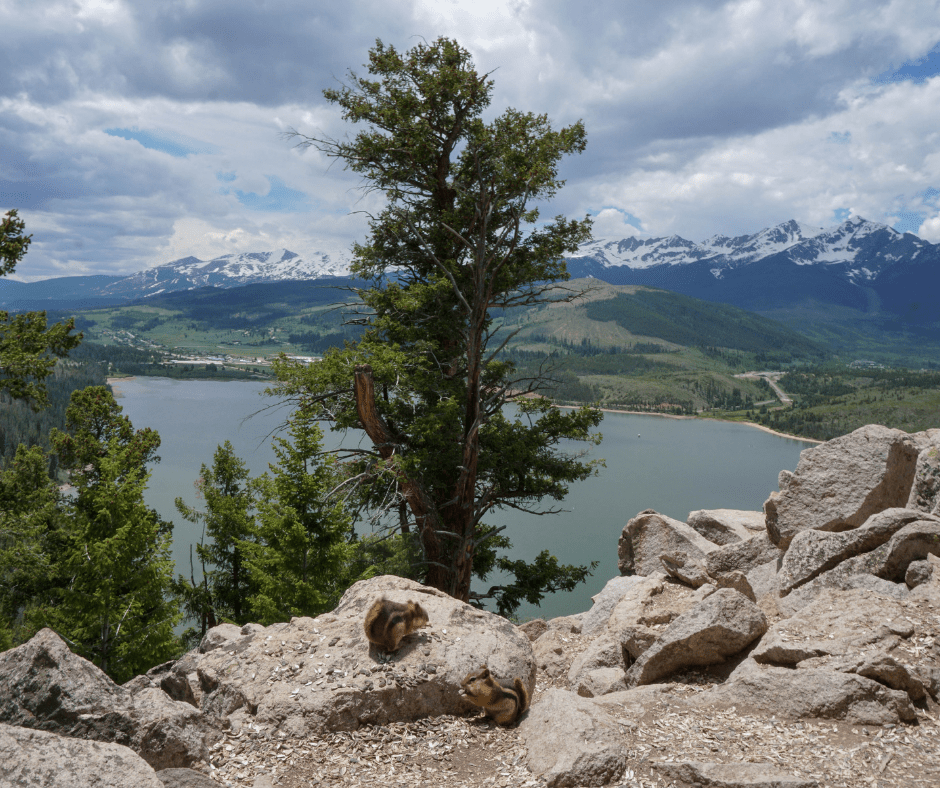 Best views in Summit County, where to take visitors in Colorado, easy trails, kid friendly, hikes for kids, hiking in Dillon, Keystone, Silverthorne, Breckenridge, where to go in Breckenridge, easy snowshoe trails in Summit County,