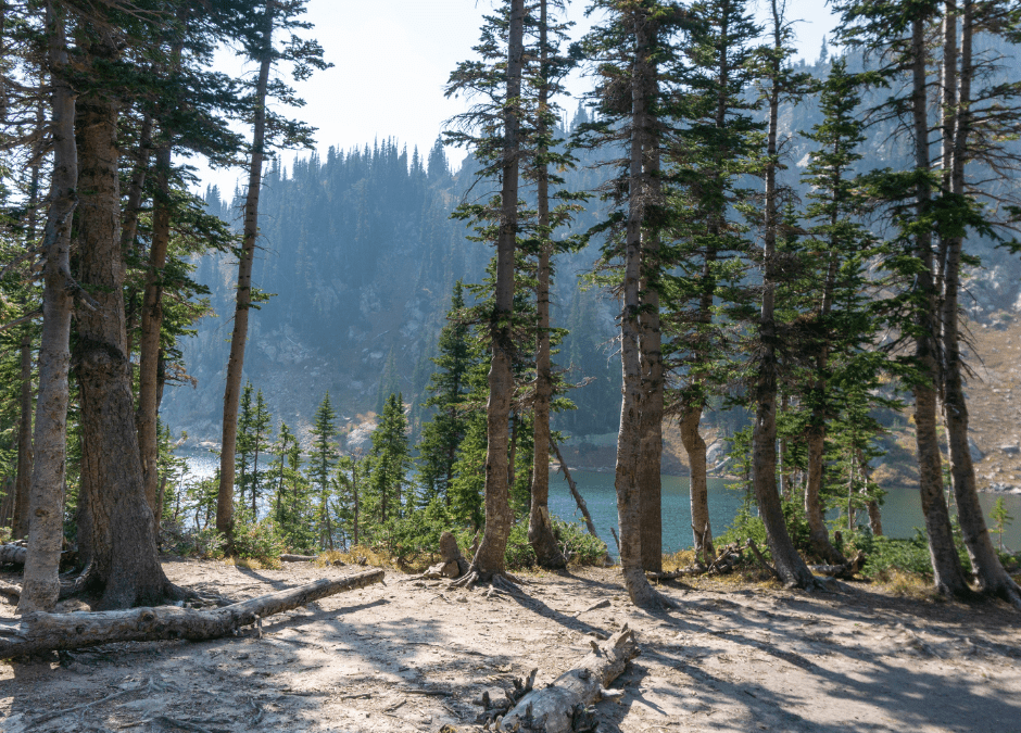 Rugged Alpine Lake Hikes!