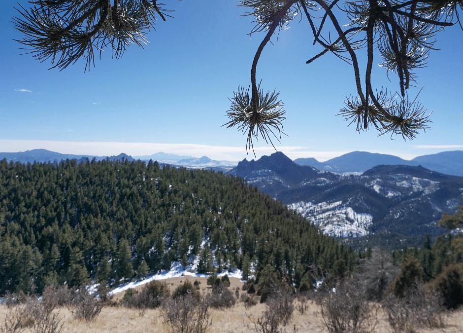 Eagle's View Trail is Surprisingly Gorgeous!
