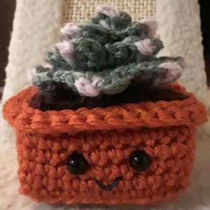 crochet hen and chicks cactus