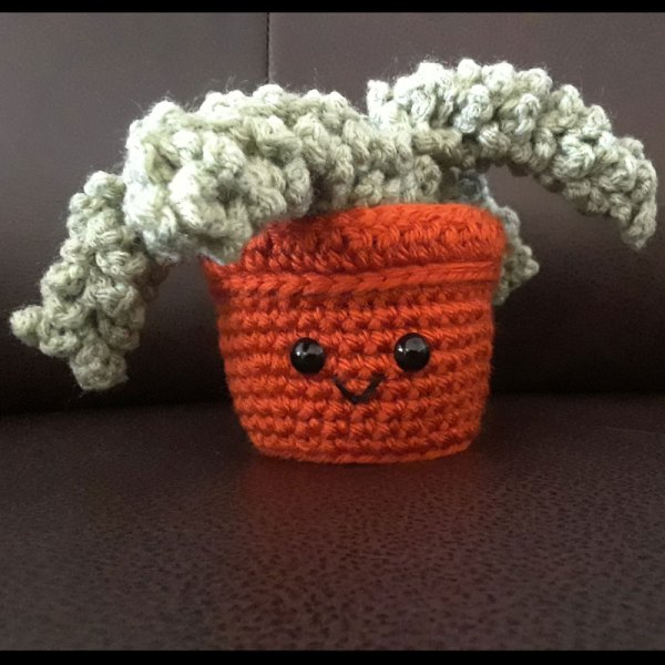 crochet donkey tail succulent