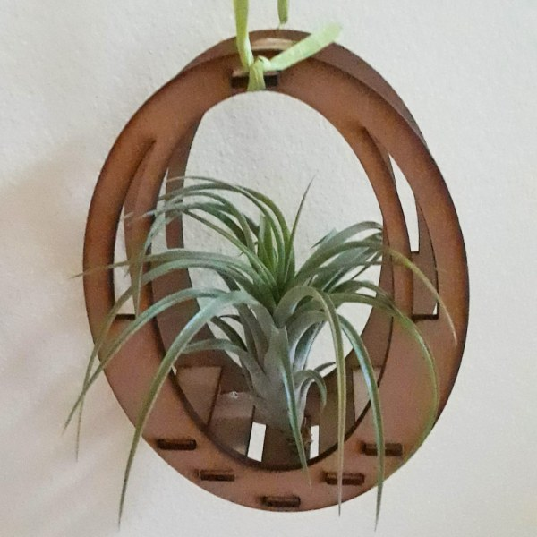 wooden hand-cut air plant holder with air plant