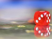 It's all in the Roll of the Dice!