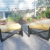 DIY Tree Trunk Benches