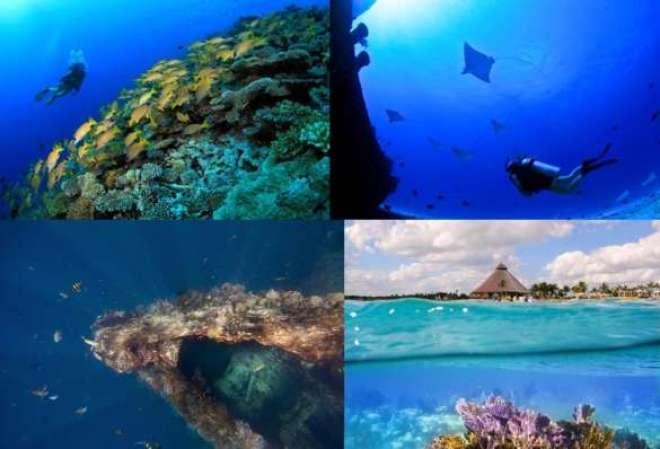 Cancún, Cozumel, Havaí e Bali: essas são as sugestões da Royal Holiday para quem deseja conhecer o fundo do mar e se encantar com as belezas marinhas.