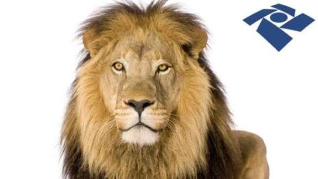 A Receita Federal já liberou o download do programa de elaboração do documento e agora é o momento de organizar para prestar contas ao leão.