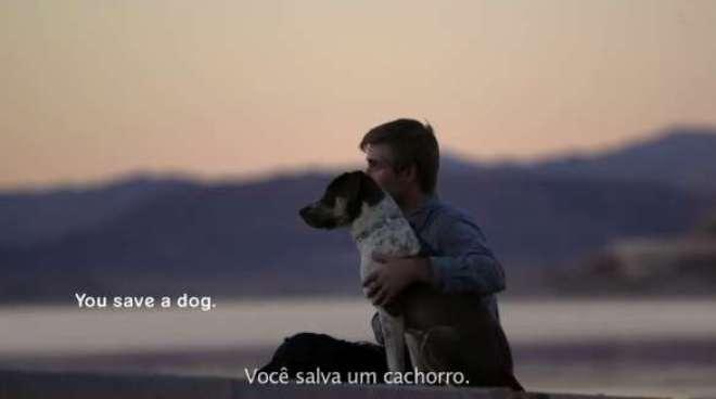 A nova campanha global da BBDO ressalta o papel dos cães em tornar o mundo um lugar melhor para se viver.