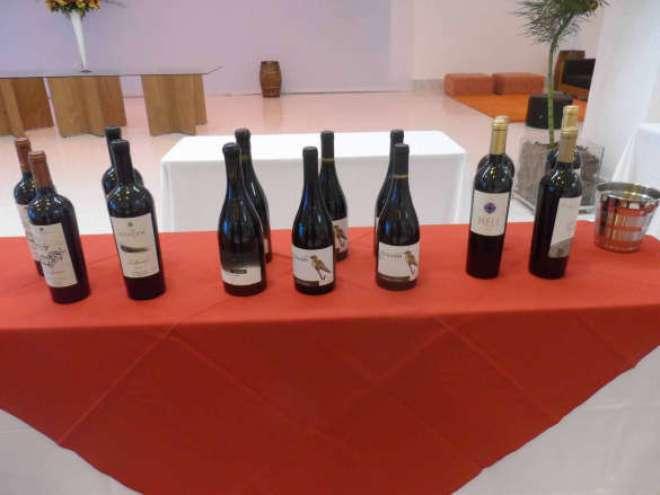 O público poderá degustar cerca de 180 rótulos, de mais de 70 vinícolas.