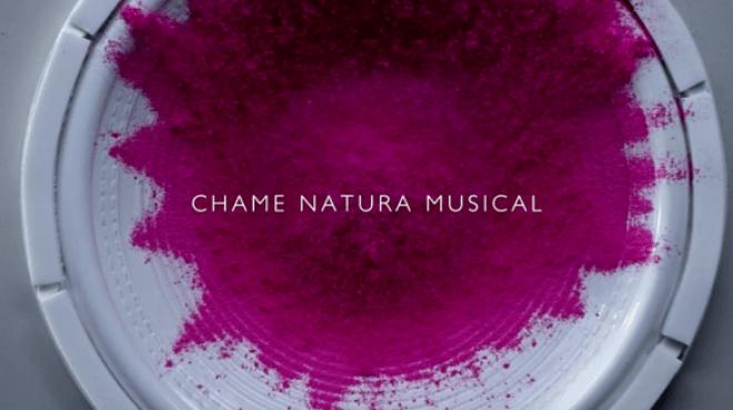Natura Musical (6)