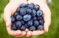 Estudo comprova que a fruta é coadjuvante na prevenção da doença, pois suas propriedades ajudam a regular o índice de açúcar no sangue.