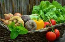 Veja agora as melhores opções para uma alimentação fresca e saudável para o Verão