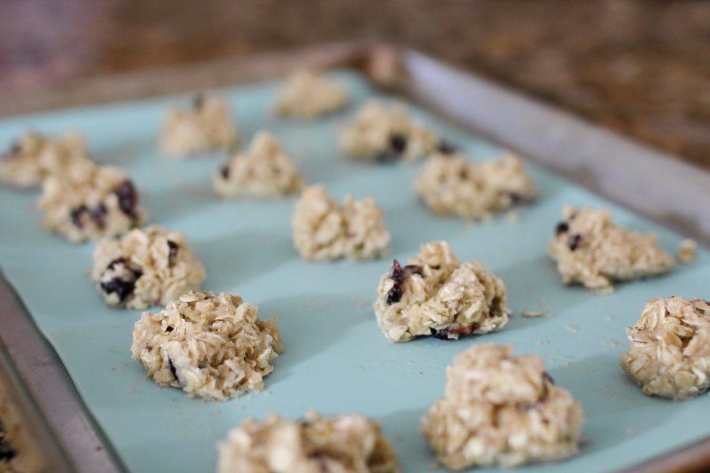 Healthy Cranberry Oat Breakfast Cookies