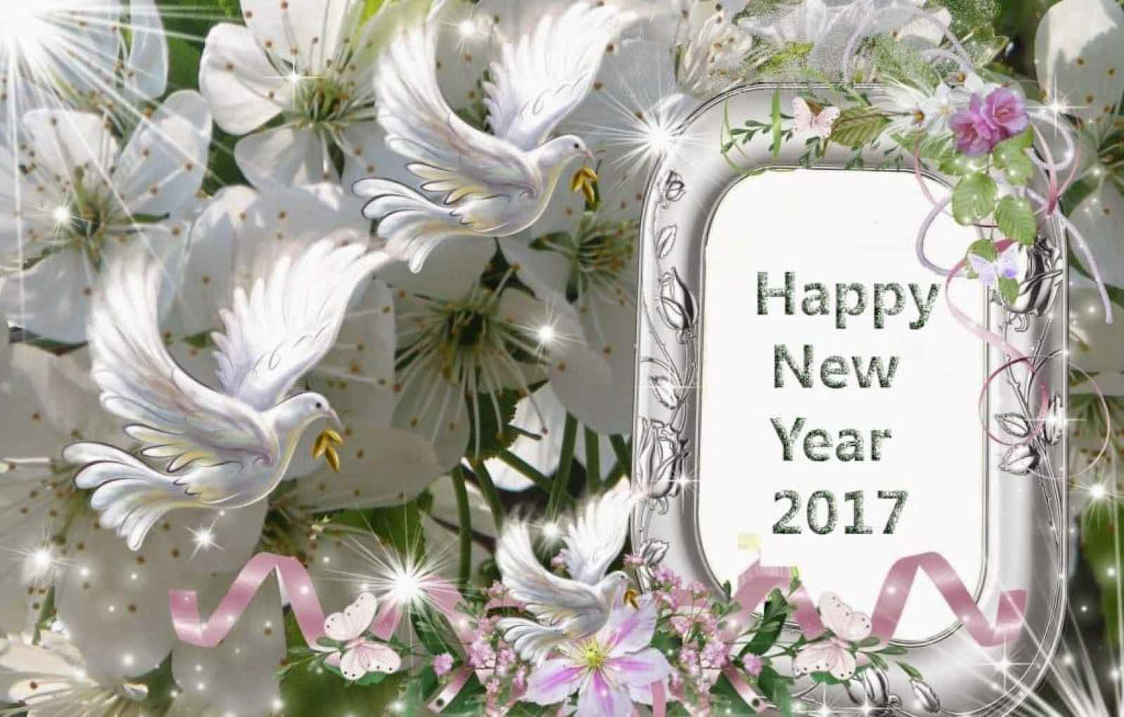 Happy New Year 2017 with birds and mirror