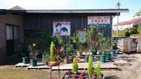Ran und Conan einfach so in einem Garten in Yura. ^^