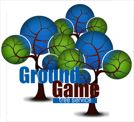 Great Logo Design for Hardscape and Tree Removal Company