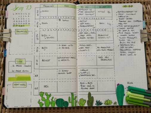 Weekly log - cactus - bujo